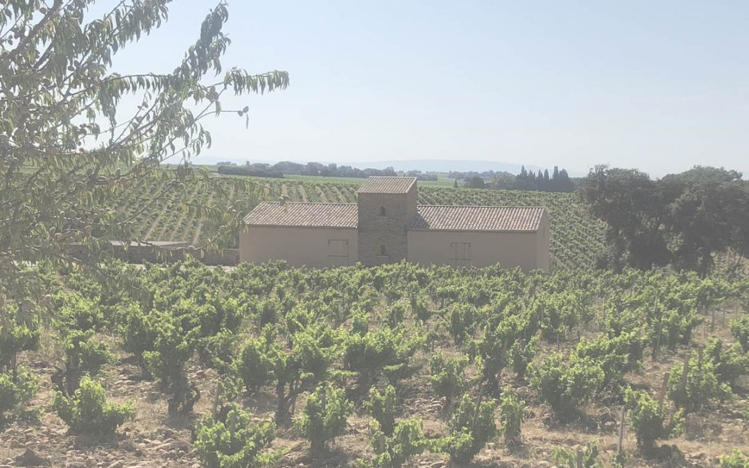 A Special Visit to Chateauneuf du Pape
