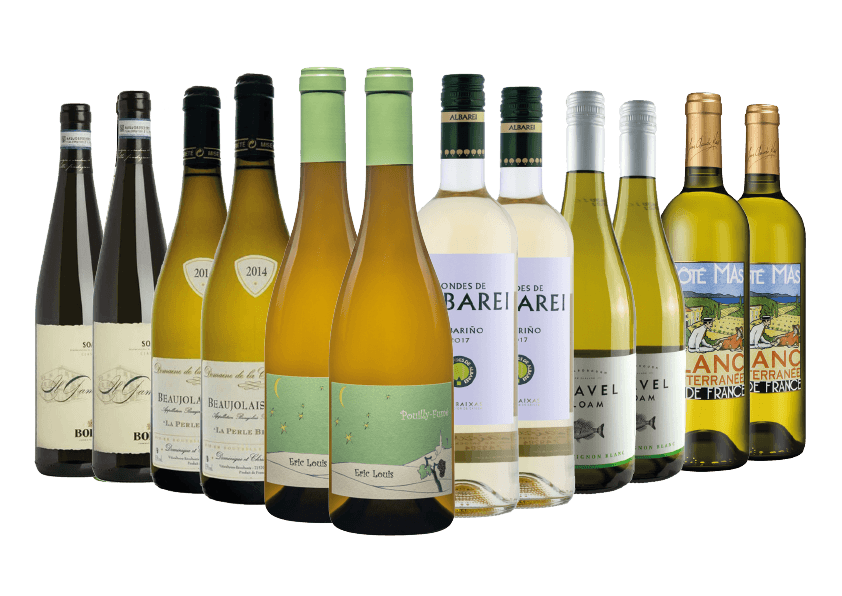 Casual and Fine Dining White Wine Case